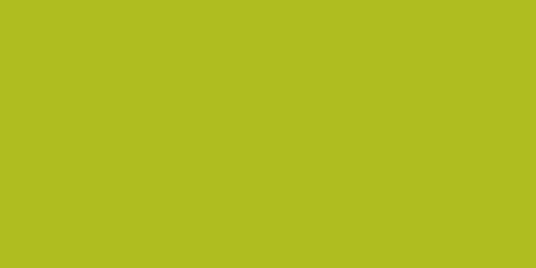 P092 Pommer Verte